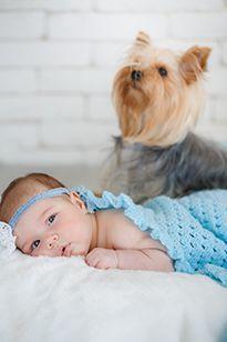 Ілюстрація немовляти з собакою